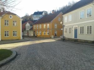 Halden street
